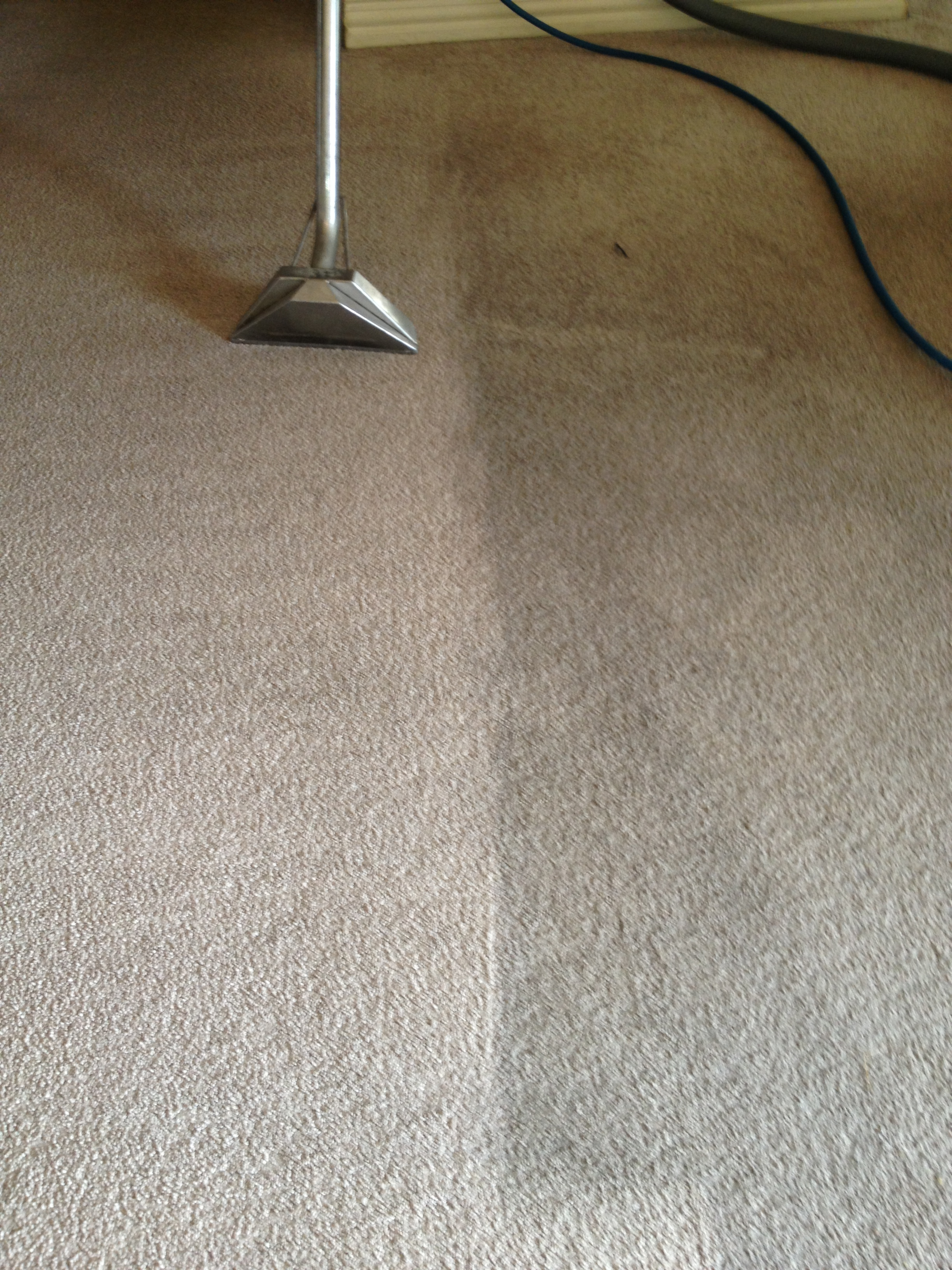 Flooring Services Texas : Why vacuuming your carpet is important cleaning